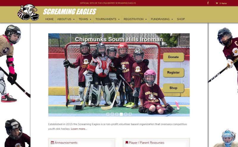 Screaming Eagles Youth Dek Hockey Website Design